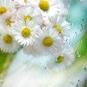 http://vpoetah.ru/images/groupphotos/5/28/thumb_b5e7c4123b50fbb657cc4f3c.jpg