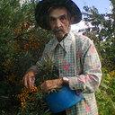 Лисовский Владимир
